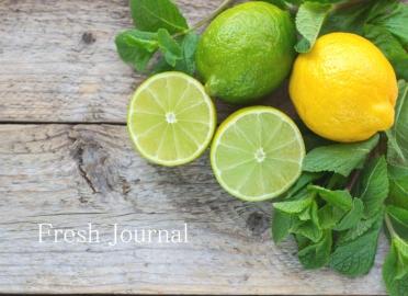 Fresh Journal(フレッシュ ジャーナル)